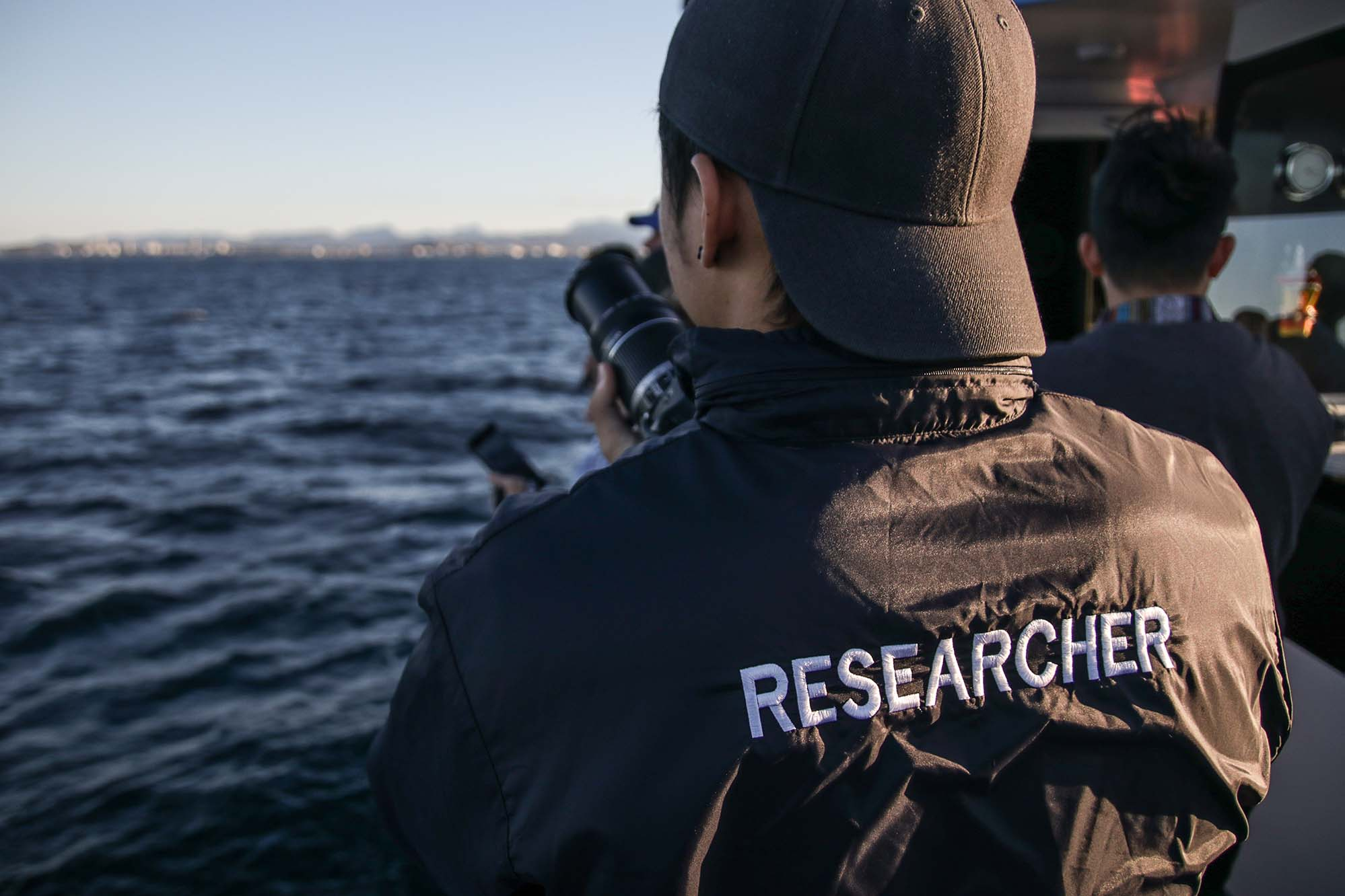 Responsible whale watching: What does it mean?